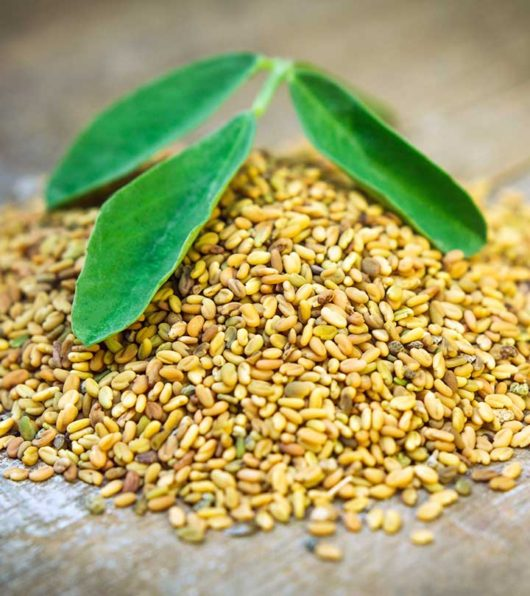 fenugreek-for-hair